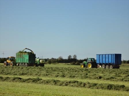 Ensilering 10 sept 2011, skördare och två vagnar